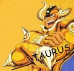 ____TAURUS - foto