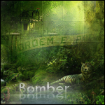BomberMan - foto