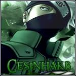 CesinhaKB - foto