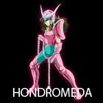 HONDROMEDA - foto
