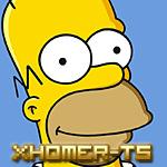 xHomer-Ts - foto