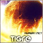Tigre_ - foto