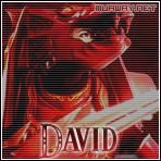 David_ - foto