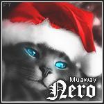 Nero_- - foto