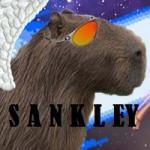 Sankleyzao - foto