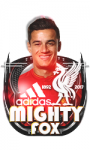 MightyFox - foto