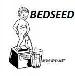 bed-seed - foto
